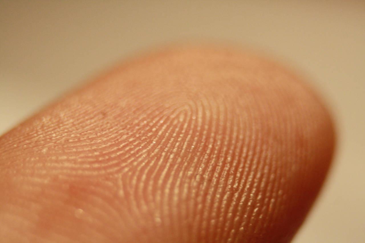 Fingerprint detector